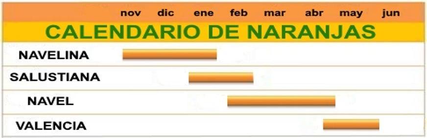 MOMENTO DE NARANJAS
