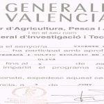 PROTECCIÓN INTEGRADA Y CULTIVO BIOLÓGICO EN CITRICOS