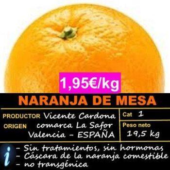 NARANJA DE VALENCIA, 20 KG