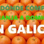 DÓNDE COMPRAR NARANJAS A DOMICILIO EN GALICIA?